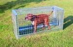Hunde-/Fuchsfalle 25 zusammenlegbar