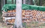 Holzplane